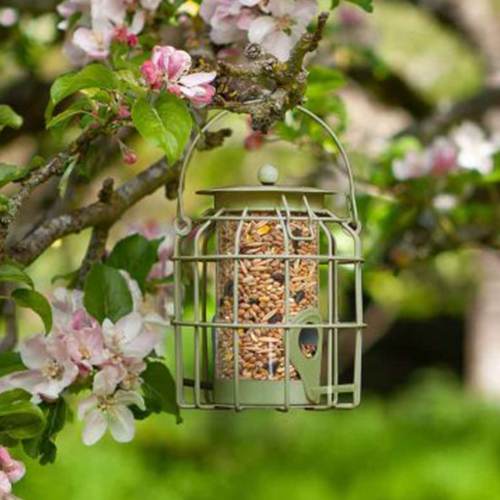 See more information about the Compact Squirrel Proof Seed Feeder