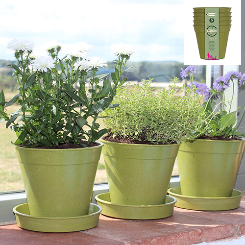 "See more information about the 5"" Sage Green Bamboo Pot - 5 Pack"
