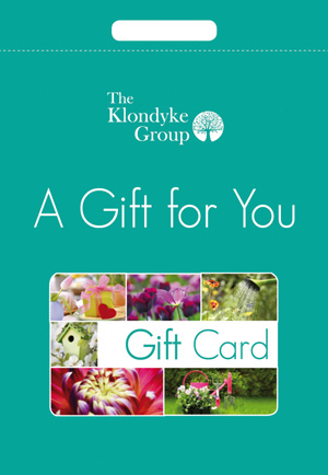See more information about the Gift Card