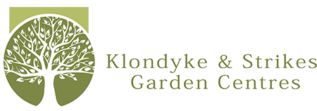 Outstanding Klondyke Strikes Online With Foxy My Klondyke Sign In Newsletter Sign Up With Beautiful Covent Garden Shop Map Also Garden Building In Addition Sky Garden Ltd And Savage Garden Cd As Well As Novelty Garden Ornaments Additionally Garden Power Tools Uk From Klondykecouk With   Foxy Klondyke Strikes Online With Beautiful My Klondyke Sign In Newsletter Sign Up And Outstanding Covent Garden Shop Map Also Garden Building In Addition Sky Garden Ltd From Klondykecouk